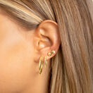 Star Stud Earrings in 10ct Yellow Gold