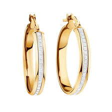 Glitter Hoop Earrings in 10ct Yellow Gold