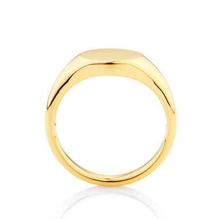 Circle Signet Ring in 10ct Yellow Gold