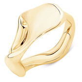 Spirits Bay Ring in 10ct Yellow Gold