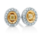 Stud Earrings with 0.30 Carat TW of Diamonds in 10ct Yellow & White Gold