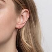 14mm Sleeper Earrings in 10ct Yellow Gold