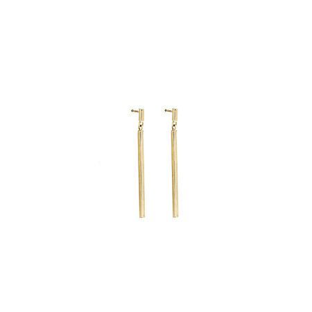 Earrings in 10ct Yellow Gold