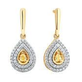 Drop Earrings with 1/2 Carat TW of Natural Yellow & White Diamonds in 10ct Yellow Gold