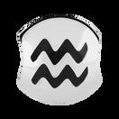 Sterling Silver Aquarius Charm